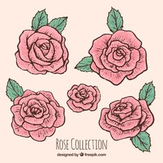 New Tattoo Rose Drawing Hand Drawn Ideas Rose Drawing Simple, Floral Drawing, Floral Watercolor, Art Sketches, Art Drawings, Rose Drawings, Flower Sketches, Rose Drawing Tattoo, Rose Sketch