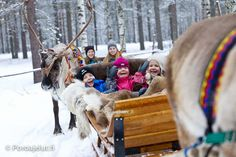 Reindeer sleigh ride  400m round: 17€ 1000m round: 28€ 3000m round (only by request) : 55€