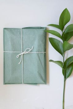 Natural recycled gift wrap ideas - conscious living on conscious shop collective