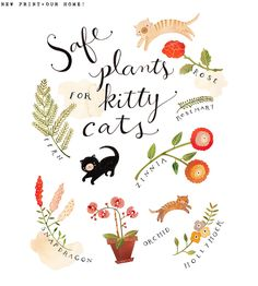 Safe Plants for Kitty Cats art print by Rebekka Seale Cat Safe Plants, Cat Plants, Garden Plants, House Plants, Indoor Garden, Indoor Plants, Crazy Cat Lady, Crazy Cats, Neko