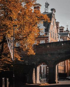 """Shelby Graham on Instagram: """"it's looking very autumnal in York 🧡 can't wait to have time for a proper walk around the city once we're settled in #york…"""""""