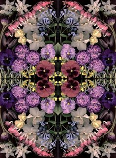 Scanned mirrored flowers