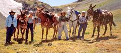 Event posted by Wyoming Wilderness Outfitters on Gun CMA. Wyoming Mountains, Hunting Outfitters, Wilderness, Camel, Horses, Animals, Animales, Animaux, Camels