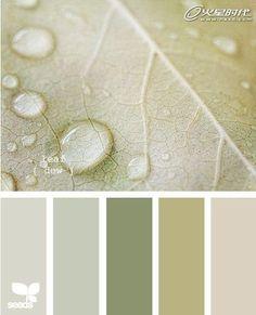 Leaf dew colour pallette from design seeds, so peaceful Paint Schemes, Colour Schemes, Color Combos, Wall Colors, House Colors, Colours, Zen Colors, Paint Colors, Colour Pallette