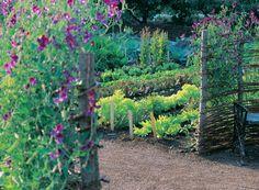 Fredriksdal Museums and Gardens - Fredriksdal museer och trädgårdar Moss Garden, Edible Garden, Vegetable Garden, Most Beautiful Gardens, Amazing Gardens, Small Garden Inspiration, Garden Nook, Urban Agriculture, Garden Landscape Design