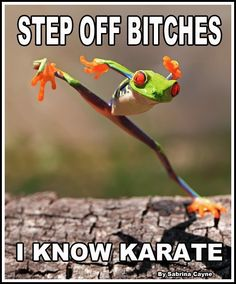 Actually, I know Taekwondo, but it still applies.