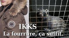 "IKKS : abandonnez la fourrure animale ! /An das Mode Label ""IKKS"": Geben Sie Tierpelz auf! / To the Fashion Label ""IKKS"":: abandon animal fur!"