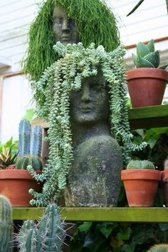 Using plants as hair in head planters