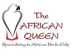 African Queen Aviaries