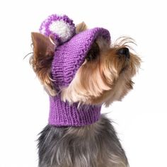 Knitted hat for dog with a visor, Winter hats for dogs, Hand knitted hat for dog, Crocheted hat for dog, Knitted hood for dogs Crochet Dog Sweater, Dog Sweater Pattern, Dog Crochet, Small Dog Clothes, Pet Clothes, Dog Beanie, Yorkie Dogs, Puppies, Dog Jumpers
