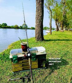 Fishing Tips, Angler Fish, St Louis, Sporty, Photos
