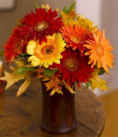 Gerber daisies and fall flowers