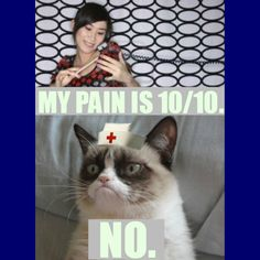 Grumpy Cat RN Nurses Week Nurse