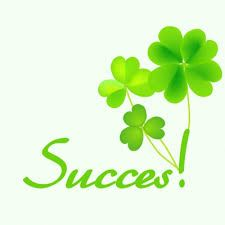 Succes! (Met klavertjes) Hd Quotes, Irish Quotes, Dutch Quotes, Good Luck Quotes, Get Well Wishes, All Is Well, Luck Of The Irish, Happy B Day, Felt Hearts