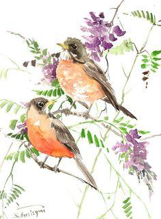 American Robin bird pair original watercolor by ORIGINALONLY