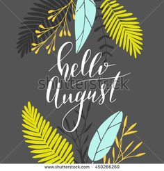 """Vector hand written phrase """"hello august"""". Modern brush lettering, calligraphic quote."""