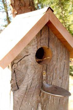 cabane a oiseau en bois brut, maisons d'oiseaux diy