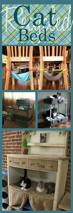 Cats Toys Ideas - Recycled Cat Beds at sewlicioushomedco. - Ideal toys for small cats Diy Cat Toys, Pet Toys, Chaise Diy, Ideal Toys, Photo Chat, Cat Room, Cat Condo, Pet Furniture, Small Cat
