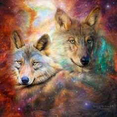 Wolf - Spirit Of The Universe Mixed Media  - Wolf - Spirit Of The Universe Fine Art Print