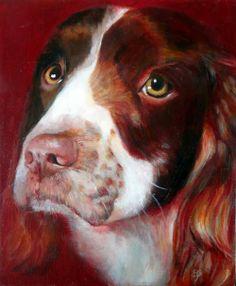 Bramble, Springer Spaniel portrait in acrylic 30 x 20cm, pet portrait commissions