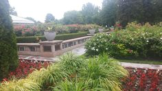 Mount Pleasant, Cemetery, Sidewalk, Plants, Walkway, Flora, Plant, Walkways, Planting