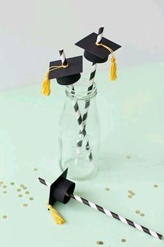 Idee laurea