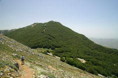 Ritrova la tua libertà con le nostre escursioni. Sulle montagne troverai la libertà e la cosa più importante della libertà è che ti fa scalare le montagne.