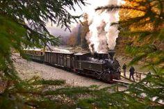 Mocanita Steam Train, Maramures Romania