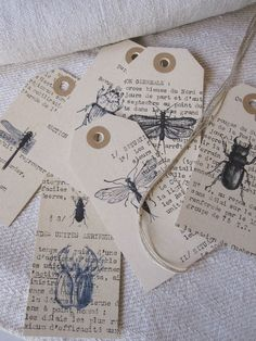 Insectes chez Antique Home