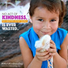 """On this World Kindness Day, remember, """"No act of kindness, no matter how small, is ever wasted."""" Quote by Aesop. Operation Blessing helps to lift families out of poverty by providing chickens for them to raise so that they can sell and eat the eggs. #OperationBlessing #humanitarian"""