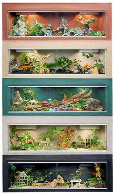 Amazing cage design showcase using SAFARI LTD figures. The Effective Pictures We Offer You About Exotic pets reptiles A quality … Bearded Dragon Terrarium, Bearded Dragon Cage, Bearded Dragon Habitat, Reptile Habitat, Reptile Room, Reptile Cage, Reptile Tanks, Reptile Decor, Lizard Cage