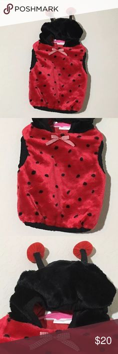 Girls Lady Bug Halloween Costume Sz 24 Months Girls lady bug one piece hooded Halloween costume Sz 24 Months Excellent condition no flaws Costumes Halloween