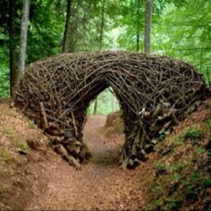 Andy Goldsworthy. What fabulous gateway this would make, to walk through and enter into a 'magical' forest just waiting to be explored.