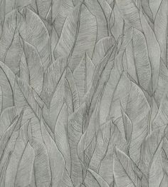 Amazone Wallpaper by Casamance