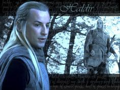 Haldir from Lord of the Rings 1280x960 Wallpaper
