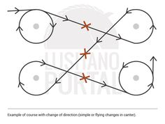 Example course with flying changes