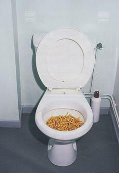 toilet fries .