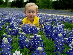 Texas Bluebonnet pictures with kids