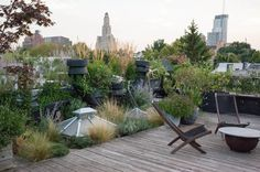 Contemporary Landscape by BROOK LANDSCAPE - Yard at a Glance Who lives here: Brook Klausing Location: Brooklyn, New York Size: 800 square feet (74 square meters)