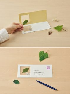 Preserve Botanical Finds and Other Travel Specimens With This Unique Japanese Stationery
