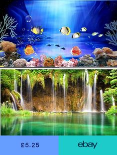 Toys & Hobbies Glorious Lil Fishy Bubba Electronic Fish Aquarium Ages 3 Electronic, Battery & Wind-up Toy Boys Girls Water Pet Gift