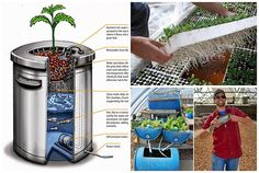 Aquaponics is a method by which you grow plants and nurture aquatic animals together in a system that recirculates the nutrients produced, to the benefit of both plants and animals. The aquaponics approach is gaining in popularity as a sustainable gardening method and if you're curious to try it out for yourself, there are some great hacks for building your own system.
