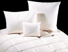 Cauți pernă pentru dormit? LUISS îți oferă o gamă variată de produse destinate somnului, de diferite dimensiuni și cu diferite durități, anatomice sau normale. Dimensiuni atipice pe comandă. Materiale naturale sau sintetice. Producător de top din Germania. Germania, Bed, Stream Bed, Beds