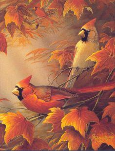 Cardinals in autumn - Sam Timm, artist Cardinal Birds, Bird Drawings, Bird Pictures, Wildlife Art, Bird Art, Beautiful Birds, Painting Inspiration, Pet Birds, Watercolor Paintings