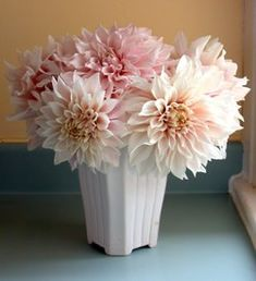white and pale pink dahlias