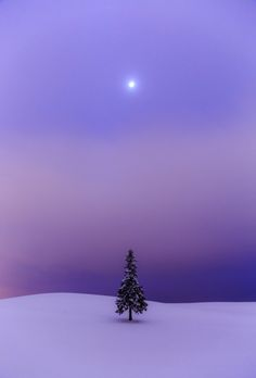40 ideas for winter landscape photography scenery Beautiful World, Beautiful Places, Beautiful Pictures, Winter Szenen, Winter Night, Winter Time, Snow Scenes, Winter Beauty, Winter Landscape