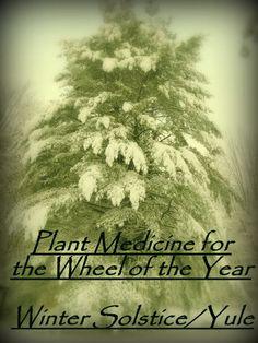 The Medicine of Winter Solstice