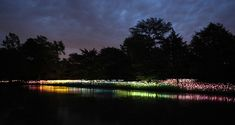 BRUCE MUNRO AT LONGWOOD GARDENS  British artist's staggeringly emotional installations...