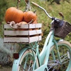 Seasonal Decor, Fall Decor, Holiday Decor, Bmx Cake, It's The Great Pumpkin, Recipe For Teens, Bicycle Decor, Bike Photography, Hello Autumn