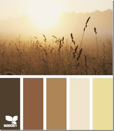 http://www.turnstylevogue.com/2012/09/8-color-palette-options-for-autumn/